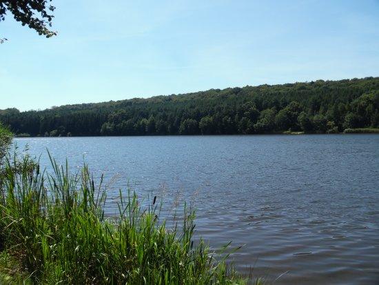 Szentgotthard, Hongarije: A hársas tó strandoldala nyár elején. Ideális célpont a természet szerelmeseinek