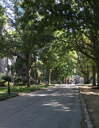 Bryn Mawr, Пенсильвания: Walkway on Campus