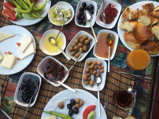 Adatepe, Turquía: Harika bir otel.Muhteşem kahvaltı,harika taş otel,dost yakınlığında otel sahipleri ve sempatik p