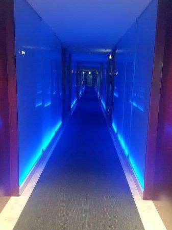 Aquashow Park Hotel: 20160909_161329_large.jpg