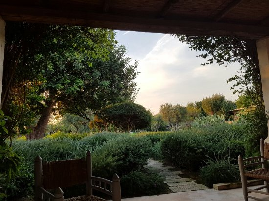 Masseria Don Cirillo: IMG-20160904-WA0010_large.jpg
