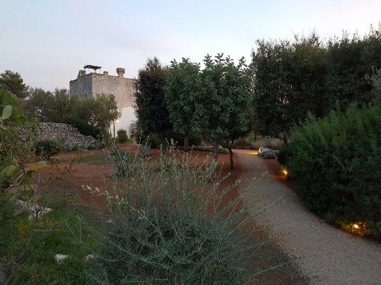 Masseria Don Cirillo: 20160904_192300_large.jpg