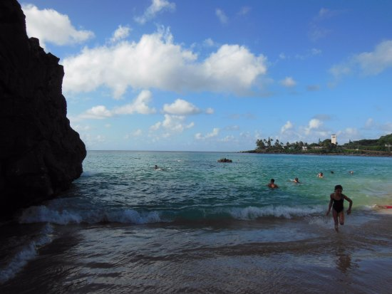 Waimea Bay : the little cliff to jump off of