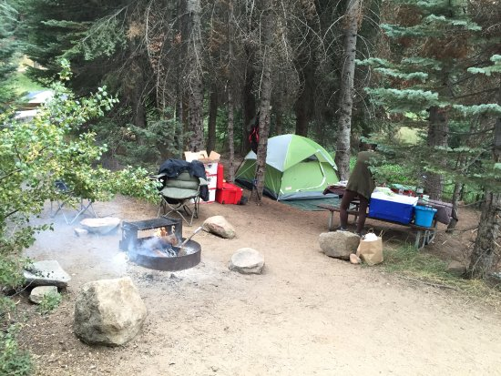 Dorst Campground: Dorst Camp Site