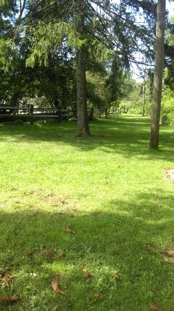 Cold Spring Harbor, NY: Grounds