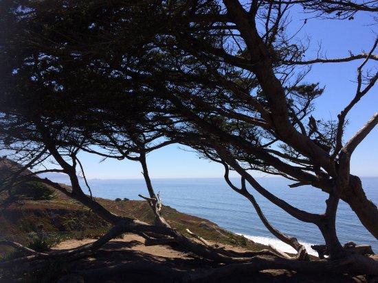 Daly City, كاليفورنيا: Thornton Beach State Park