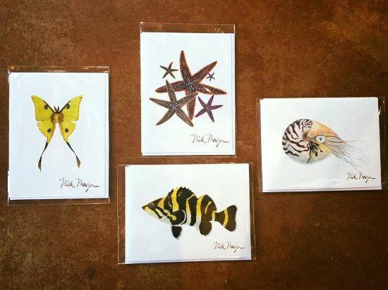 Solana Beach, Kalifornia: Handcrafted Note Cards