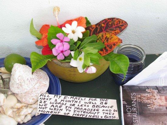 Inano Beach Bungalows: Az éden üzenete Papa Jon szavaival