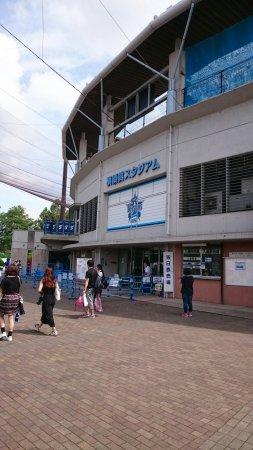 Yokosuka Stadium