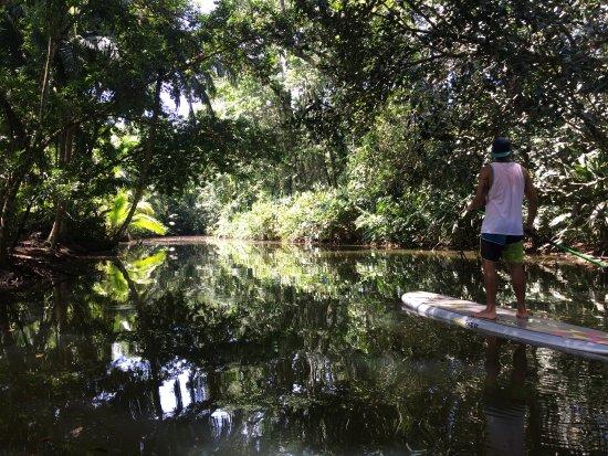 Punta Uva, Costa Rica: Flat-As-Pancake paddle!