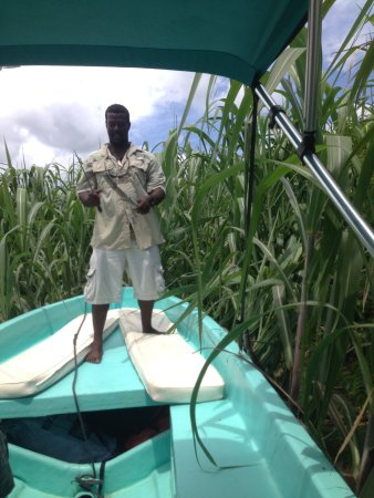 Placencia, Belize: Percy cutting sugar cane