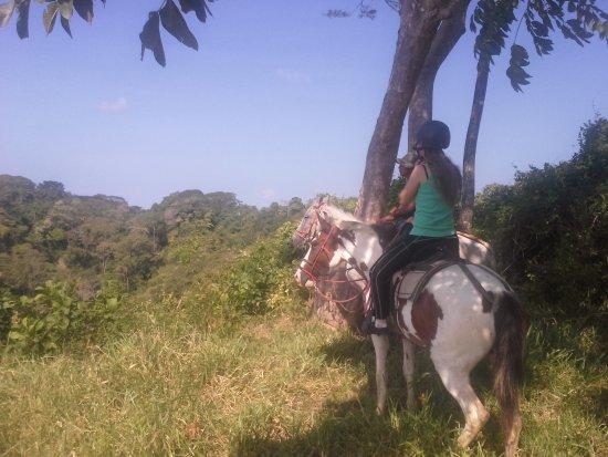 Mal País, Costa Rica: Mountain and ocean view