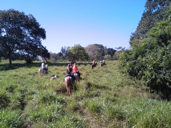 Mal País, Costa Rica: countryside