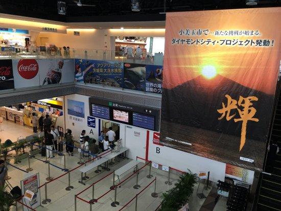 Omitama, Japonya: photo6.jpg