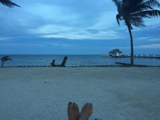 Coral Bay Villas : photo0.jpg