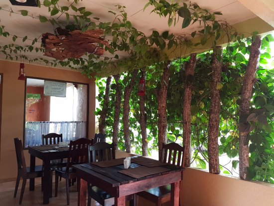 San Luis, Costa Rica: Vegetation wall at the pizza place