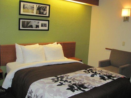 Sleep Inn Murfreesboro: Bed and chair in room