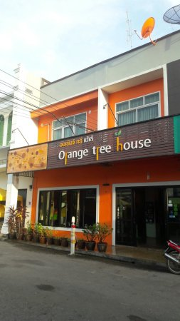 Orange Tree House : 20160918_065327_large.jpg