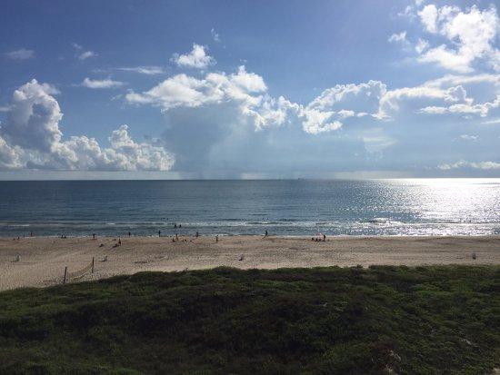 Sea 4 Ever: View