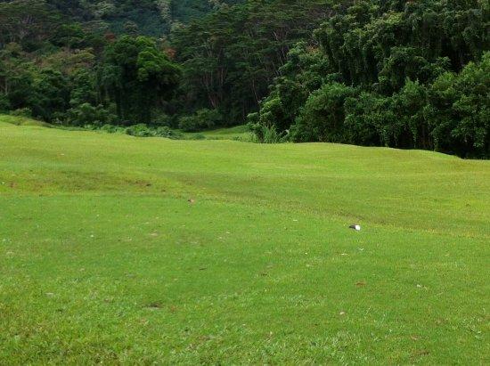 Bilde fra Kaneohe