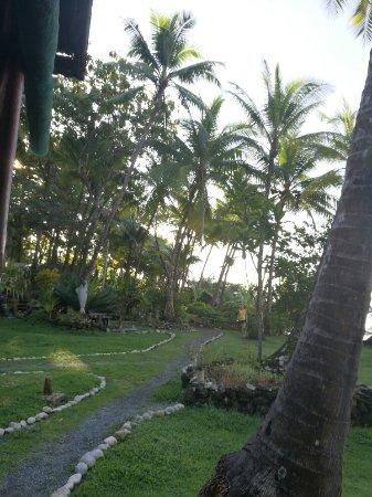 Carate, Costa Rica: IMG_20160914_064137_large.jpg