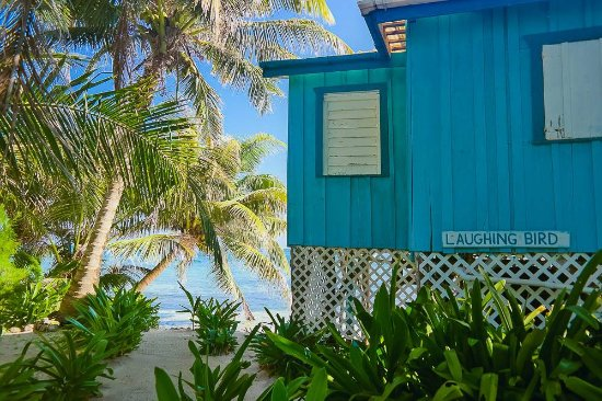 Ranguana Caye Cabanas