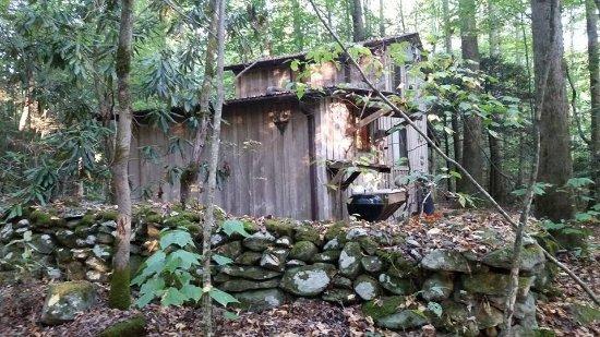 Garden of Eden Cabins照片