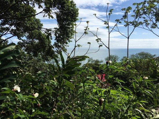La Cusinga Eco Lodge: photo0.jpg