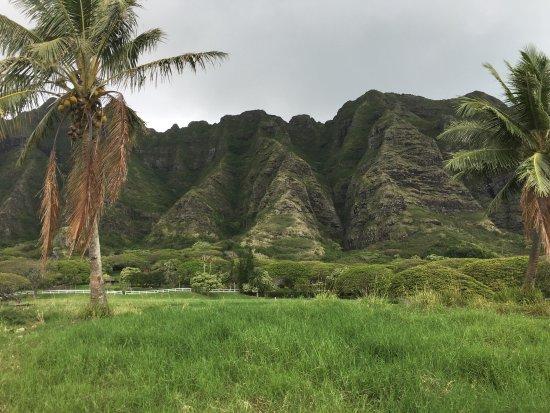 Kaneohe, Χαβάη: photo0.jpg