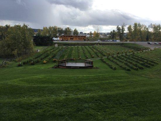 Принс-Джордж, Канада: photo1.jpg
