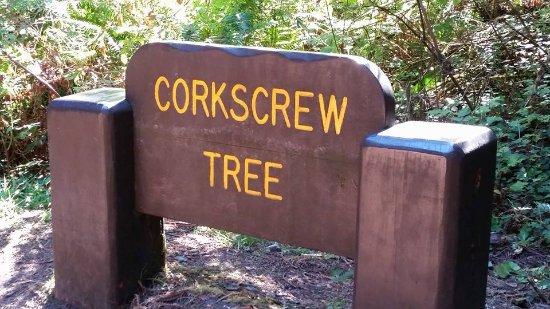 Orick, Californië: Sign