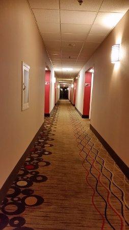 邁爾斯堡機場 I-75 希爾頓恒庭飯店照片