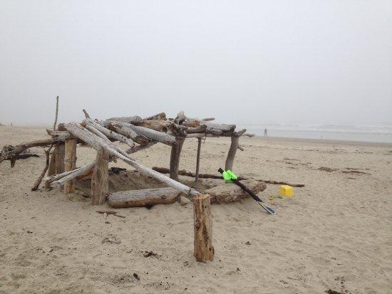 Tillamook, OR: Cape Mears beach
