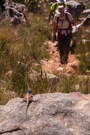 Clanwilliam, Sudáfrica: A local checks out the hikers...