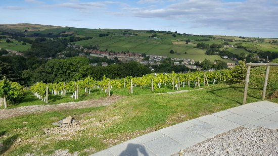 Holmfirth Vineyard: 20160917_102241_large.jpg