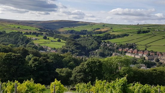 Holmfirth Vineyard: 20160917_153244_large.jpg