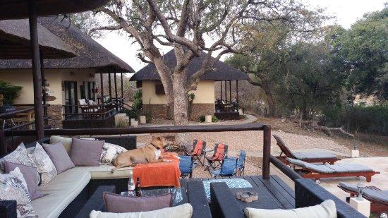 Balule Private Game Reserve, جنوب أفريقيا: Overal kon je heerlijk zitten en genieten van het uitzicht