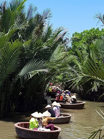 Bay Mau Coconut Forest Tour