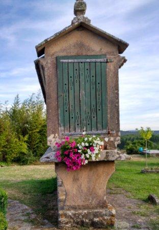 Restaurante Roberto: Detalle del jardín
