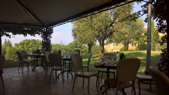 terrazza lato giardino e ulivi - Picture of Locanda Gallehus, Lazise ...