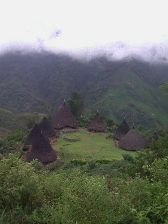 Ruteng, Ινδονησία: dear all traveller who want to visit wae rebo:-) if you don't mind let me organize your trip