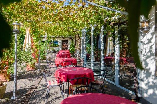 Appiano sulla Strada del Vino, Italia: Giardino con la pergola