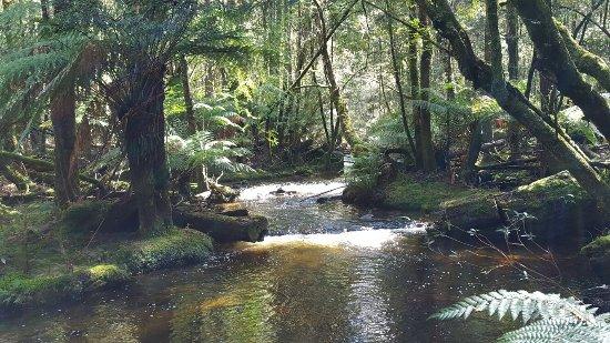 菲欣納國家公園照片