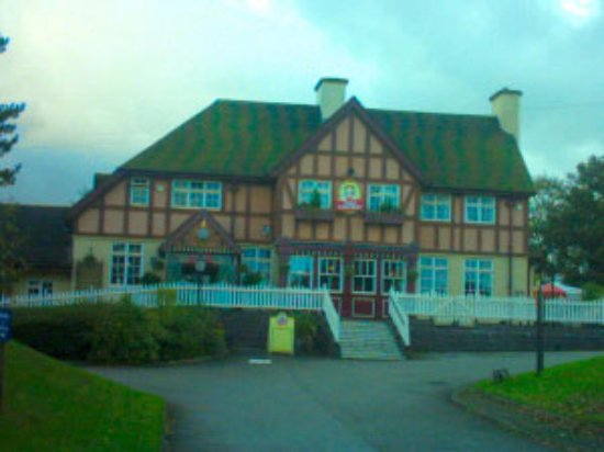 Toby Carvery Hoole Village: Outside from the road