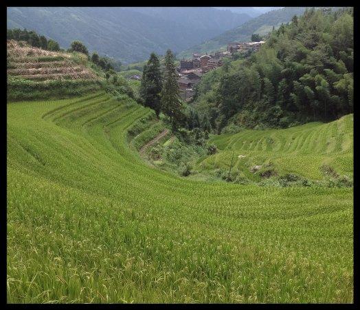 Long Ji One Hotel: View near rhe village of Ping An