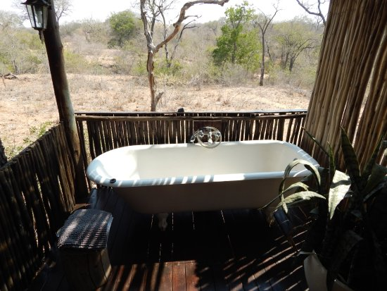 Chapungu Tented Bush Camp Foto