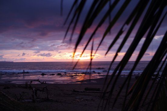 Pirate Cove: photo4.jpg
