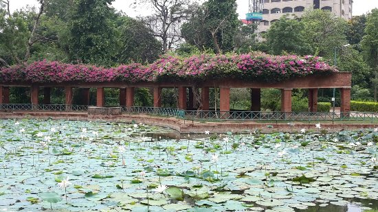 Parimal Garden : 20160918_104741_large.jpg