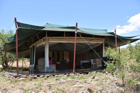 Kicheche Valley Camp: Das Zimmerzelt von aussen