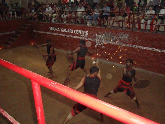 Mudra Cultural Centre: martial arts